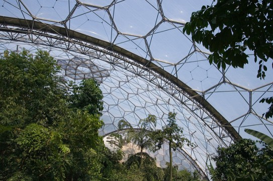 eden-project-biome