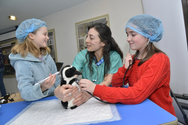 vets-in-action-this-february-half-term-at-zsl-whipsnade-zoo-czsl