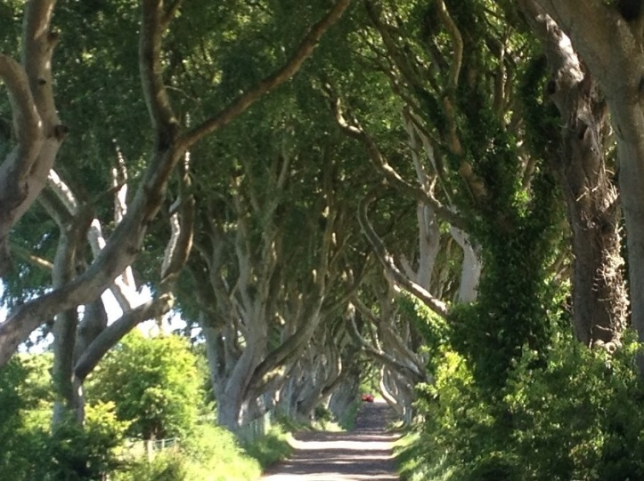 The Dark Hedges on the King's Road where Arya Stark was seen fleeing from King's landing. A must see destination on any stayaction in Northern Ireland. A favourite with photographers and Game of Throne fans.