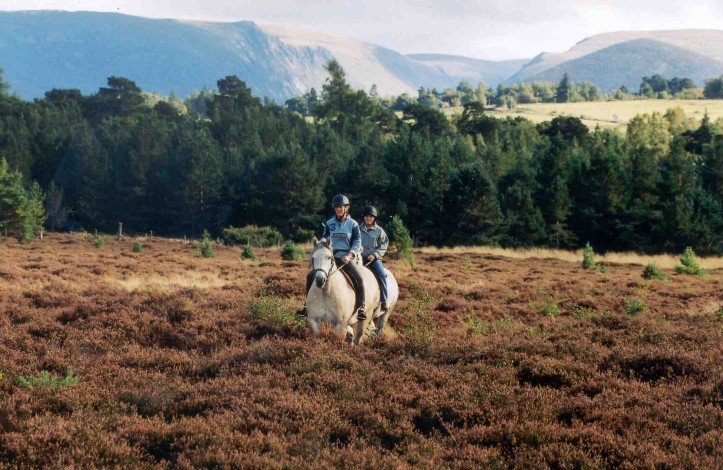 Riding at Rothiemruchus. The Cairngorm region is a great place for a staycation. Lots of family fun to do including walking, biking and horse riding.