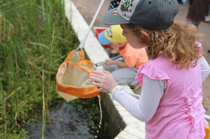 Things to do with the kids this summer. Pond dipping at Forest of Marston Vale